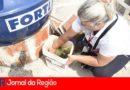 Jundiaí tem seis casos confirmados de dengue