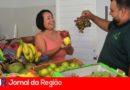 Entidades recebem 1 tonelada de alimentos da Festa da Uva