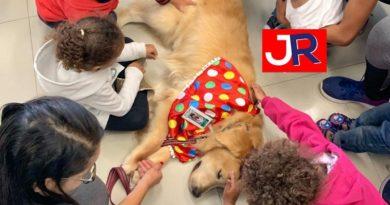 Cão fantasiado visita crianças no HU