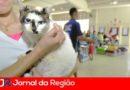 Rio Acima terá castração de cães e gatos
