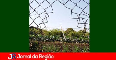 Cortaram cerca para furtar hortaliças