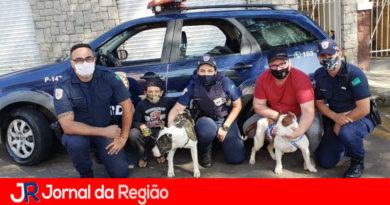 Guardas resgatam casal de pitbulls de córrego
