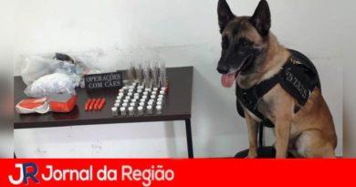 Guarda localiza drogas em operação da Prefeitura no Sorocabana