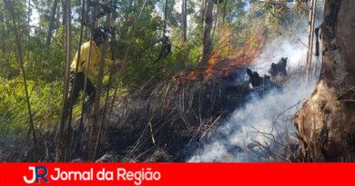 Defesa Civil pede ajuda da população contra as queimadas