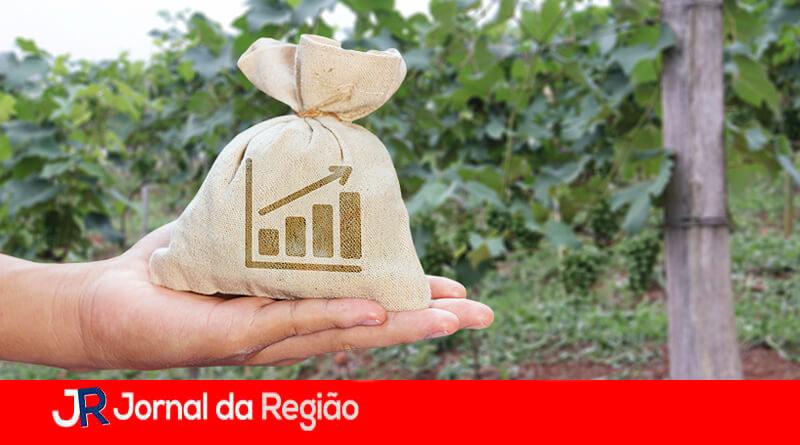 Curso de agronegócio. (Foto: Divulgação)