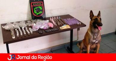 Canil da Guarda Municipal de Jundiaí. (Foto: Divulgação)