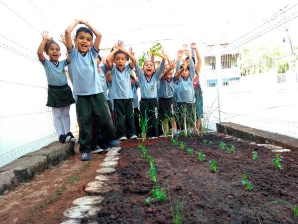 Dia Nacional da Educação Ambiental. (Foto: Divulgação/Prefeitura de Louveira)