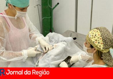 Parceria entre Estado e Prefeitura construirá clínica veterinária em Jundiaí