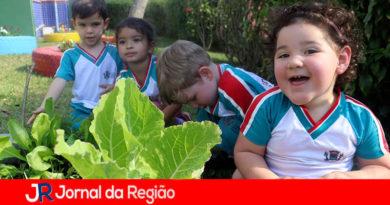 Projeto Horta de Campo Limpo Paulista. (Foto: Divulgação)