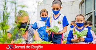 Projeto Horta de Itupeva. (Foto: Divulgação)